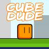 CUBE DUDE ADVENTURE