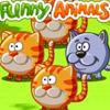 FUNNY ANIMALS MATCHING