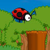 FLY LADYBIRD GAME