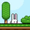 SUPER BUNNY GAME