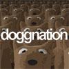 Doggnation