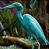 Green heron slide puzzle