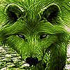 Native green wolf slide puzzle